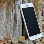 אייפון מונח על עץ
