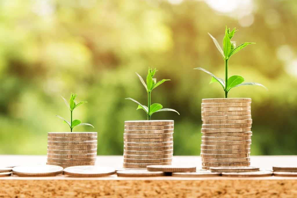מגדלי מטבעות וצמחים בצמיחה